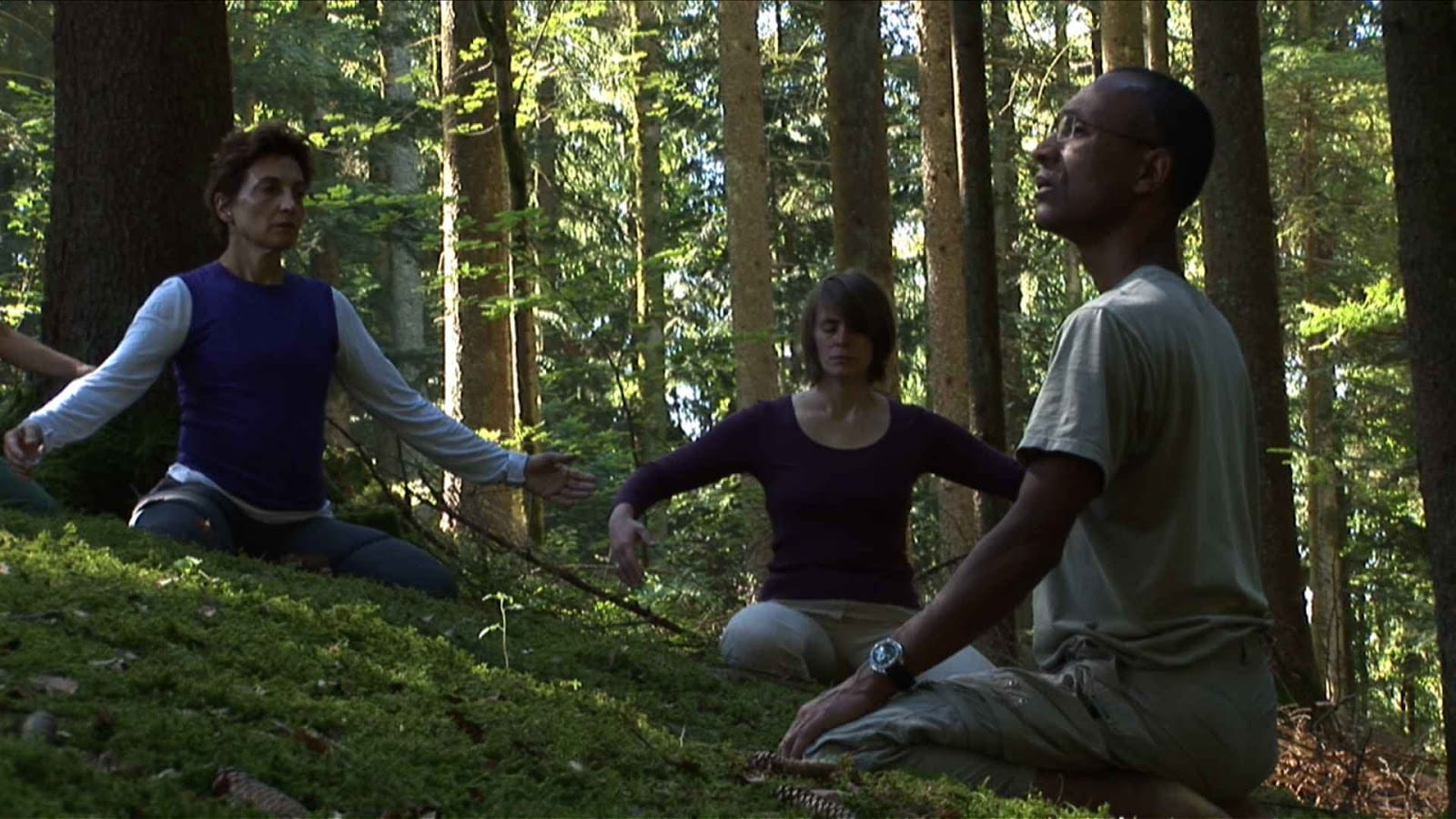 meditating in a forest