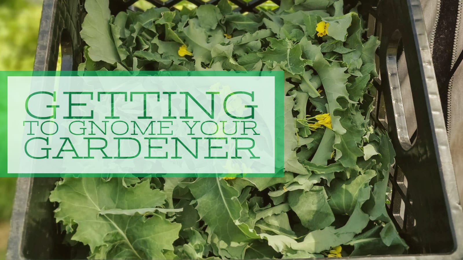 Getting to GNOME Your Gardeners