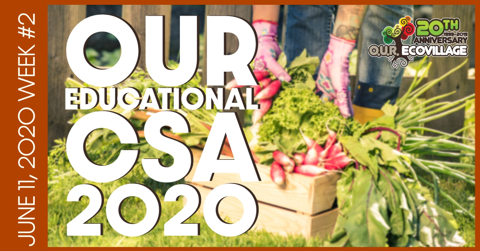 OUR Educational 'Community Supported Agriculture' (CSA) Food Box 2020 – Week #2!
