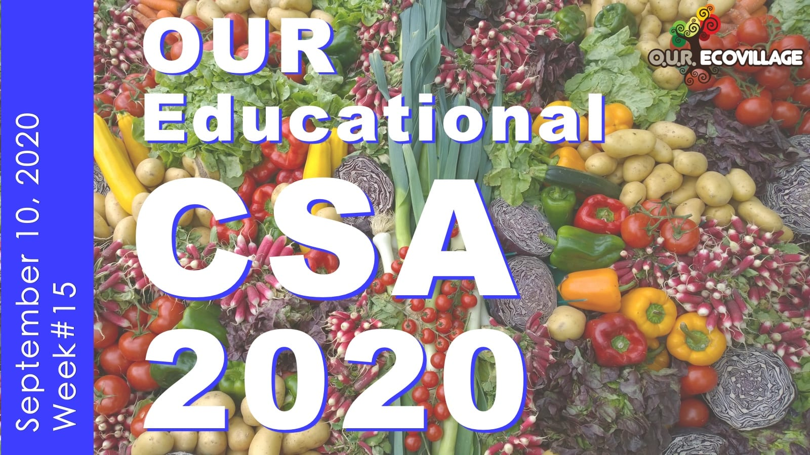 OUR Educational CSA Week #15