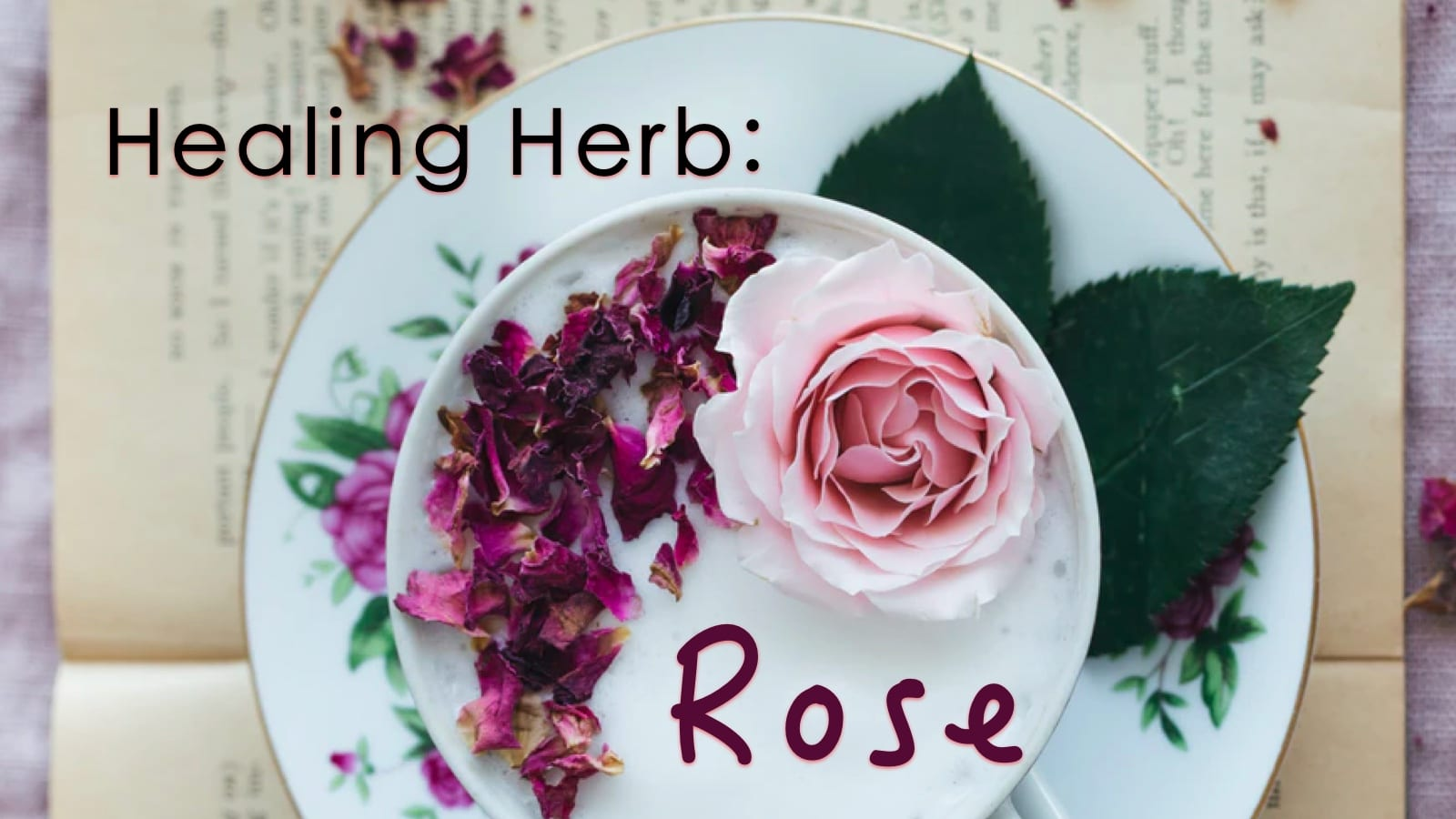 Healing Herbs: Rose