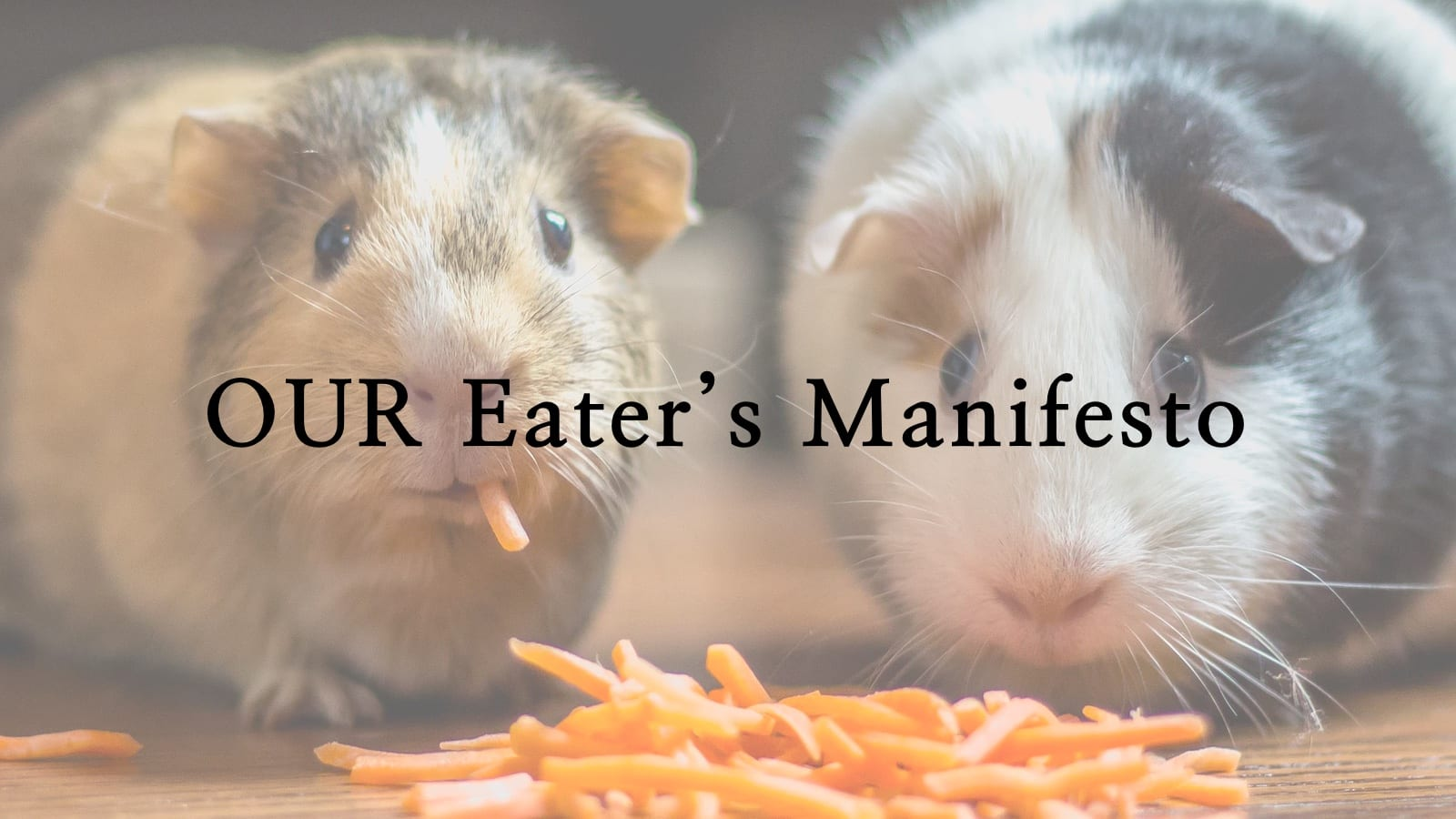 OUR Eater's Manifesto