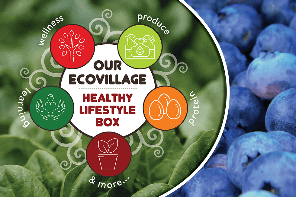 Healthy Lifestyle Box Graphic