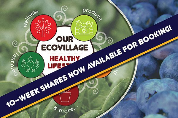 OUR Ecovillage Healthy Lifestyle -- 10-week shares now available for booking
