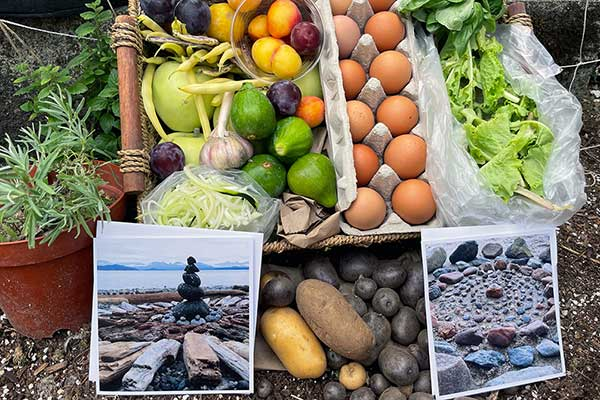 OUR Ecovillage CSA Box photo